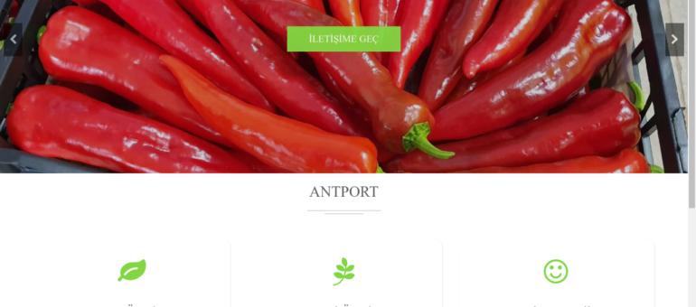 antport.com.tr